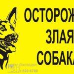 табличка осторожно собака, табличка осторожно злая собака